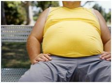 Ondervoedingsstress door gedenatureerde voeding leidt tot overgewicht.